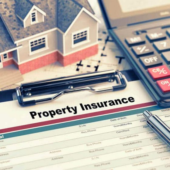 Starting a business of property insurance